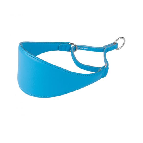 Sky Blue Martingale Wide Leather Collar
