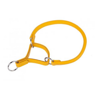 Yellow Rolled Martingale Style Collar