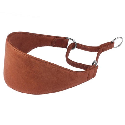 Brown Martingale Wide Leather Collar