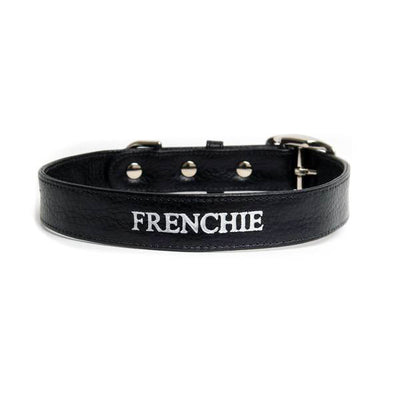 Frenchie Collar