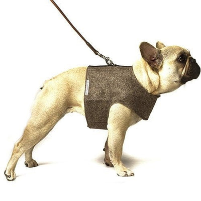 Herringbone Tweed Soft Harness