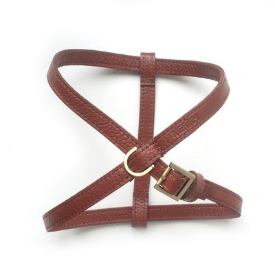 Cognac Leather Harness