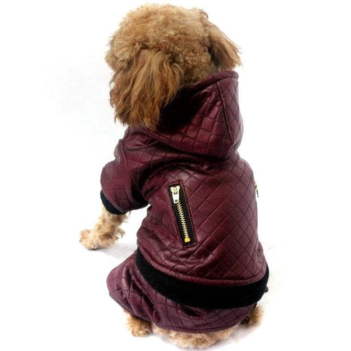 Designer Maroon Leather Dog Jacket