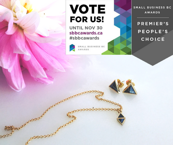 We are nominted for the Premier's People's Choice SB BC Award!