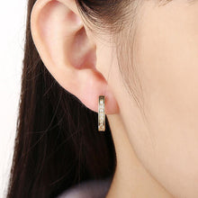 Load image into Gallery viewer, Fashion Simple Plated Gold Geometric Cubic Zirconia Stud Earrings