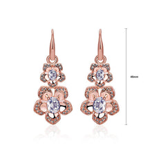 Load image into Gallery viewer, Fashion Elegant Plated Rose Gold Cubic Zirconia Earrings - Glamorousky
