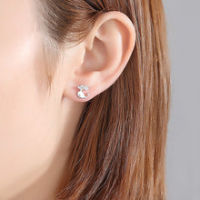 Load image into Gallery viewer, 925 Sterling Silver Simple and Cute Dolphin Stud Earrings with Cubic Zirconia
