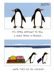 Funny Cards - Difficult To Tell Male From Female