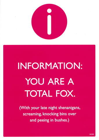 You are a total fox