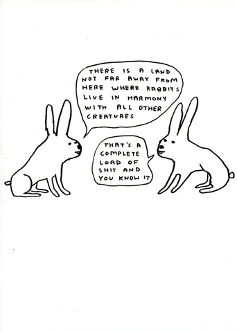 Rabbits live in harmony