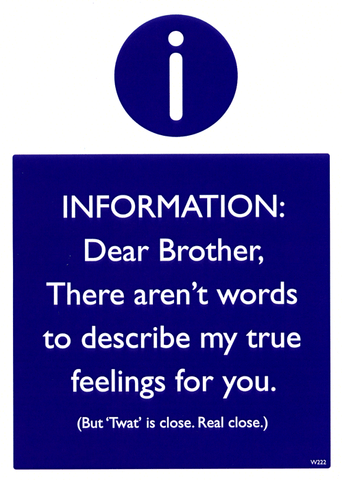 Funny Cards - Brother - Aren't Words To Describe