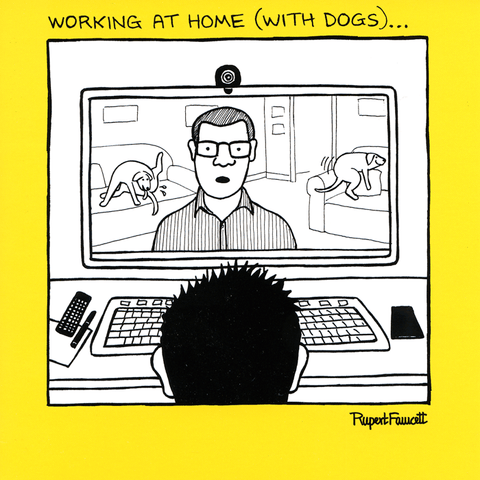 Working at home (with dogs)