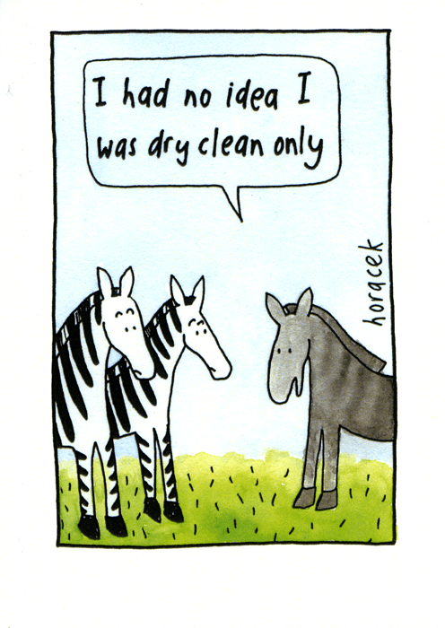 Funny Cards - Zebra - Dry Clean Only