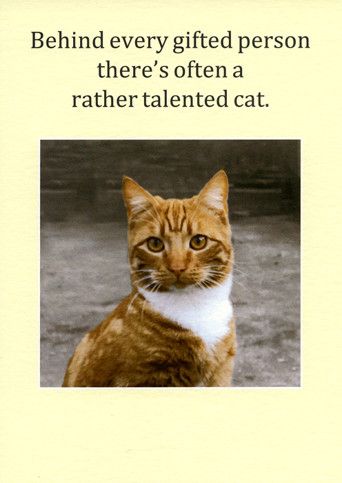 Funny Cards - Behind Gifted Person - A Cat