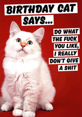 Rude Birthday Cards - Birthday Cat Says