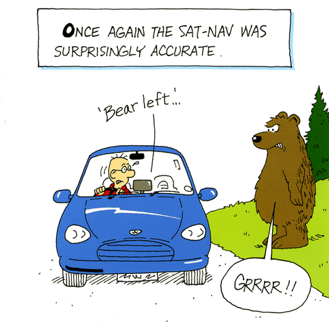 Sat Nav accurate - Bear left