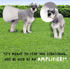 Funny Cards - Stop You Scratching