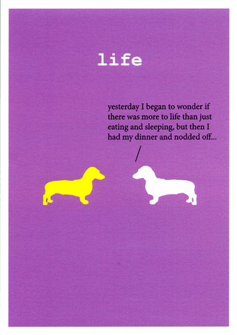 Funny Cards - Wonder If There Was More To Life