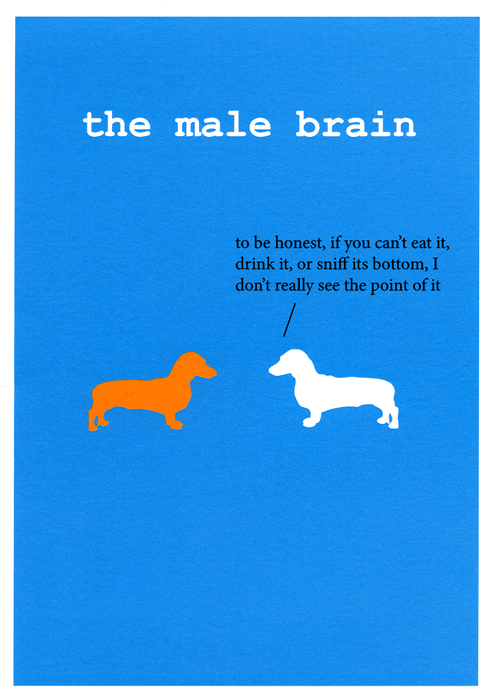 Funny Cards - Dog - The Male Brain