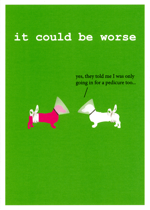 Funny Cards - Dogs: It Could Be Worse