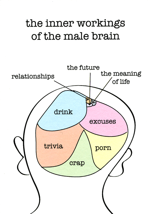 Funny Cards - Inner Workings Of The Male Brain