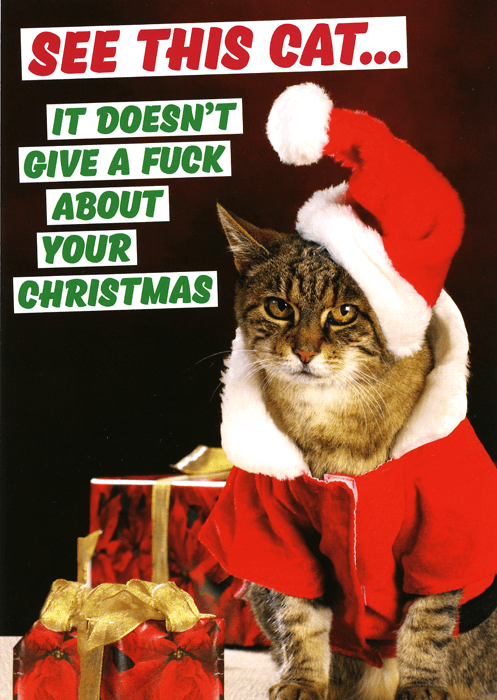Rude card - Cat - doesn't give fuck about Christmas | Comedy Card ...
