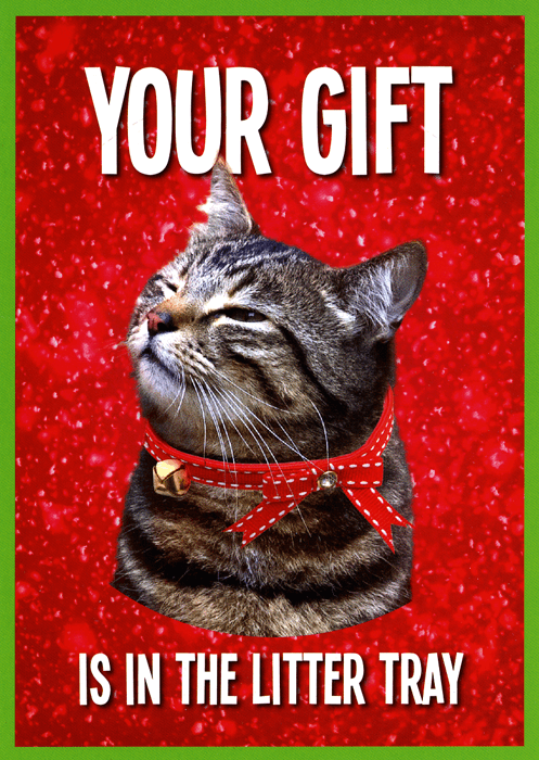 Funny Christmas Cards - Cat - Christmas Gift