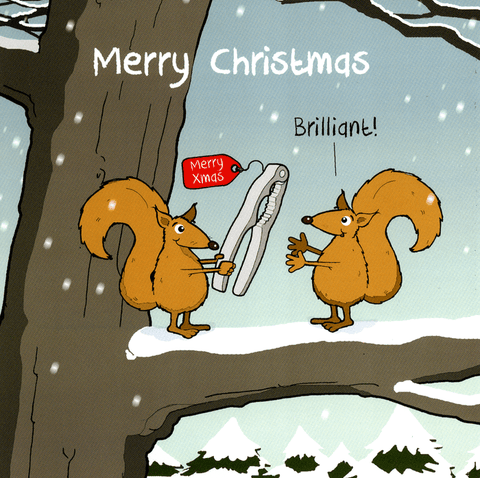 Funny Christmas Cards - Squirrel Christmas Present