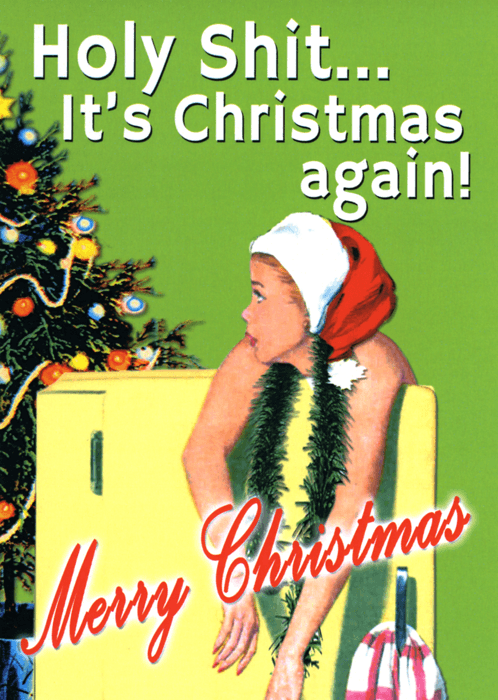 Funny Christmas Cards - Holy Shit - Christmas Again