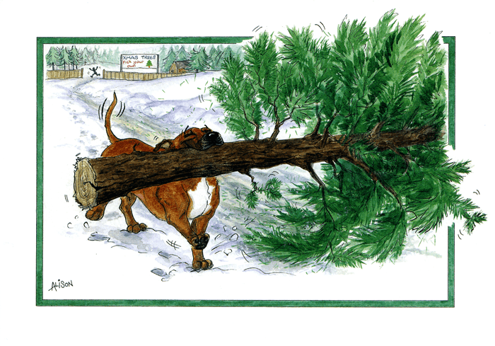 Funny Christmas Cards - Dog - Pick Your Own Christmas Tree