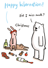 Funny Christmas Cards - Hibernation - Did I Miss Much?