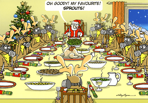 Funny Christmas Cards - My Favourite - Sprouts!