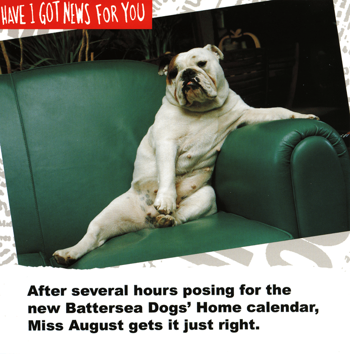 Funny Cards - Battersea Dogs' Home Calendar