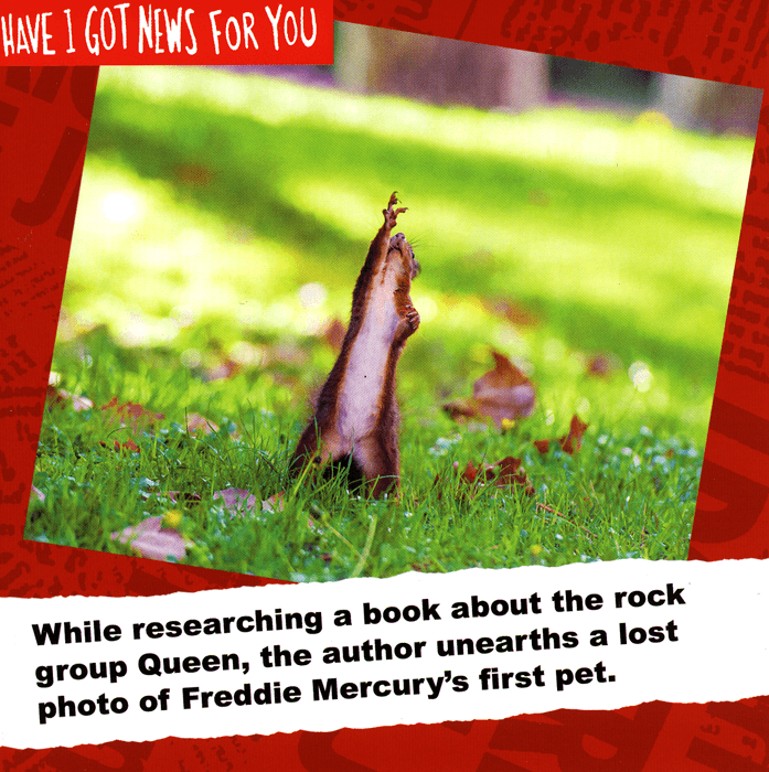 Funny Cards - Freddie Mercury's First Pet