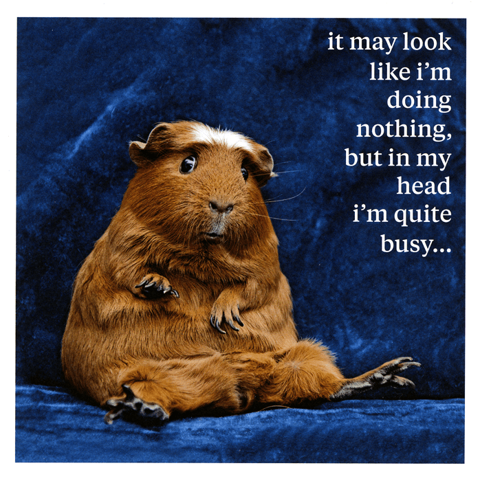 Funny Cards - May Look Like I'm Doing Nothing