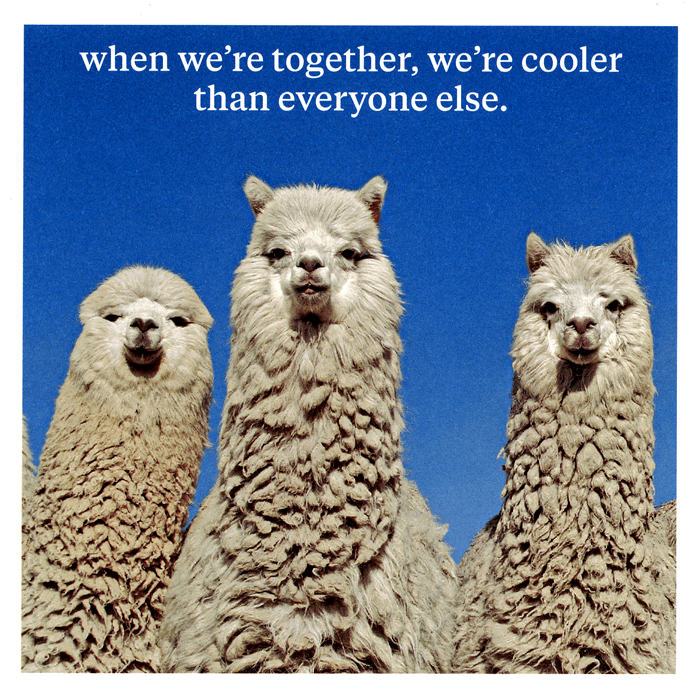 Funny Cards - When We're Together, We're Cooler