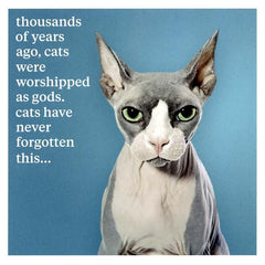 Funny Cards - Cats Were Worshipped
