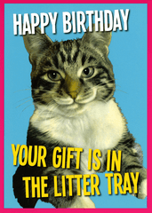 Birthday Card - Birthday Gift Is In The Litter Tray