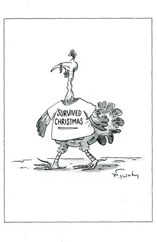 Funny Christmas Cards - Turkey: Survived Christmas