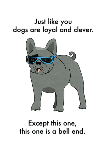 Dogs are loyal and clever like you