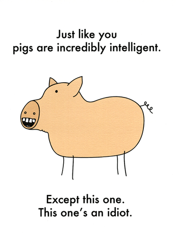 Like you, pigs are intelligent