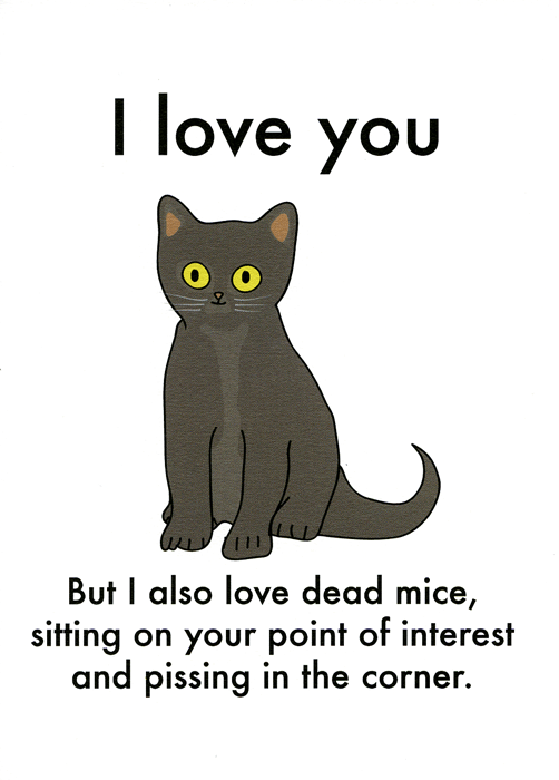 Funny Cards - Cat - I Love You