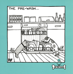 Funny Cards - The Pre-wash