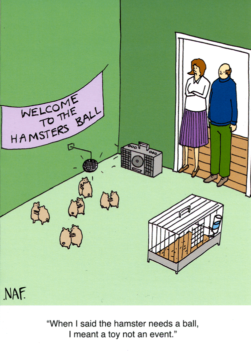 Funny Cards - Hamster Ball