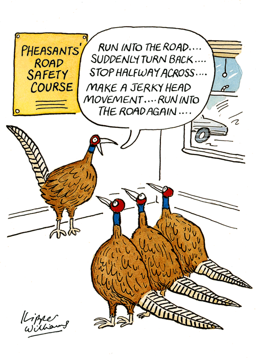 Birthday Card - Pheasants' Road Safety Course
