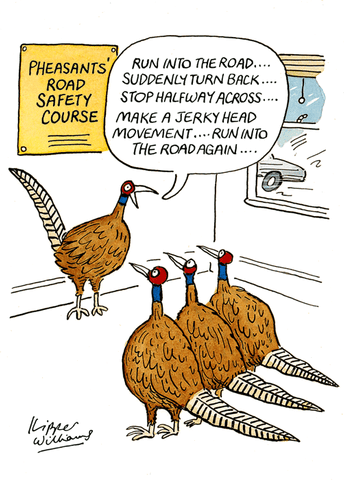 Pheasants' Road Safety Course