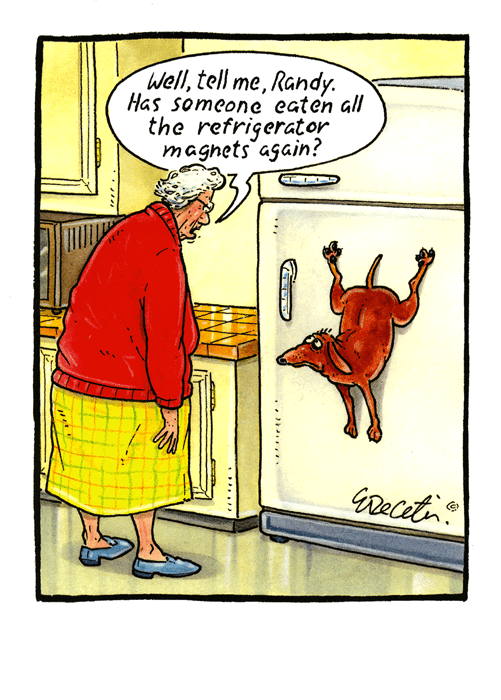 Funny Cards - Eaten The Refrigerator Magnets Again?