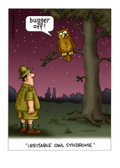 Birthday Card - Irritable Owl Syndrome