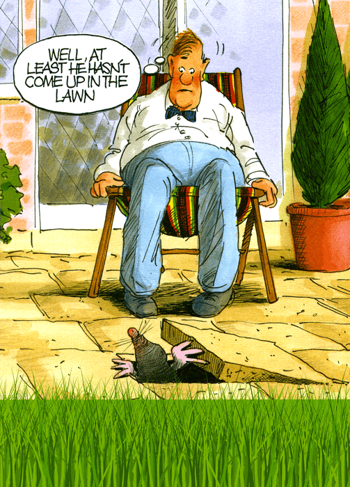 Funny Cards - Mole - Least Hasn't Come Up In The Lawn