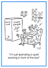 Funny Cards - Quiet Evening In Front Of The Box